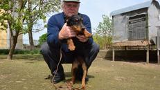 Slavonskom župniku lovački psi pomažu da zaboravi na stres